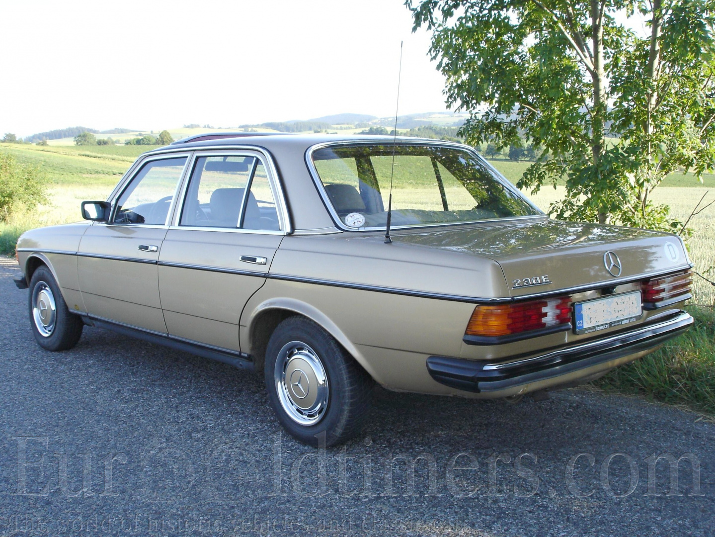 1981 mercedes benz 230 e w123 gallery veter ni i for Mercedes benz w123 parts